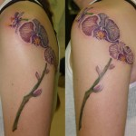 Orchid-Tattoos8