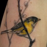 Bird Tattoo, Bird Tattoos, Tattoos, tattoo designs, tattooing, tattoos, designs, piercing, ink, pictures, images