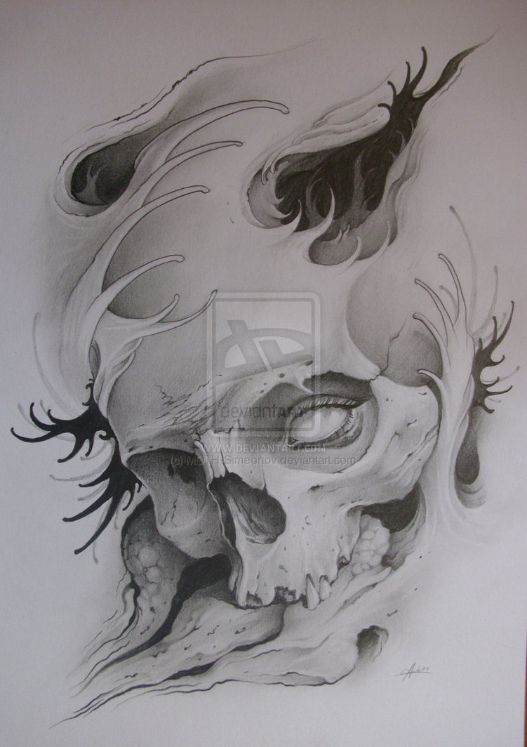 Japanese Smoke Drawing Moth Simeonov Skull Ta...
