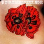 Poppy-Tattoos5